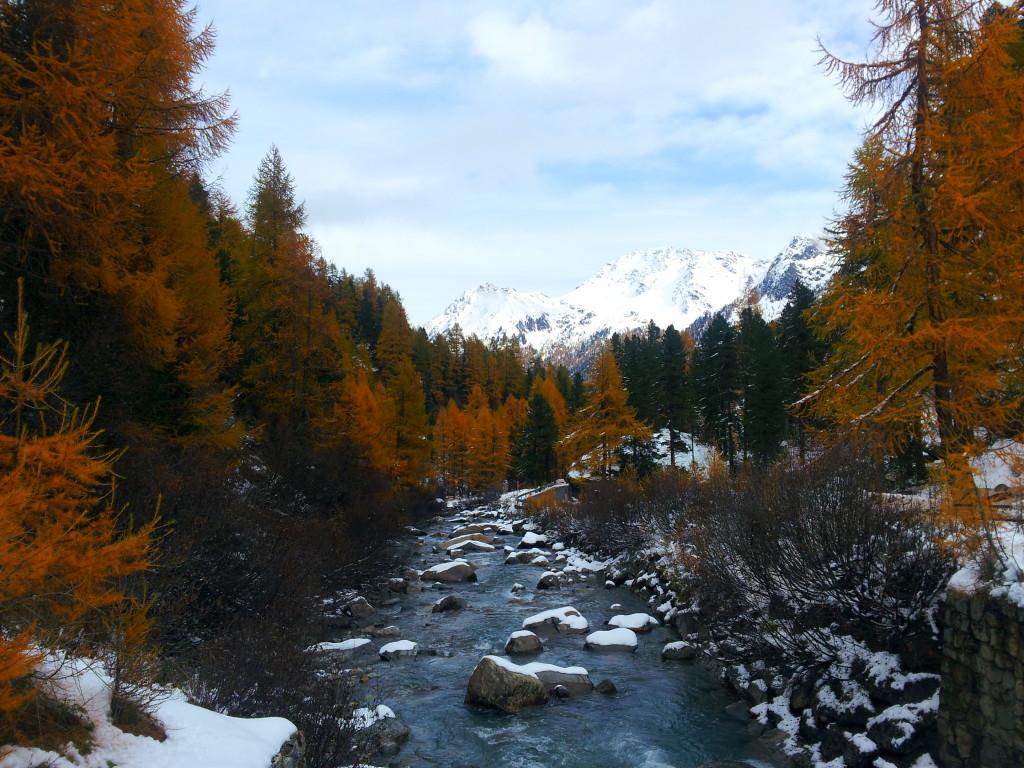 Bergrivier Martelltal Zuid Tirol