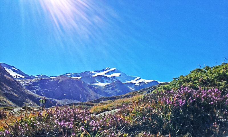 Zufallspitze 3757m Martelltal Zuid Tirol